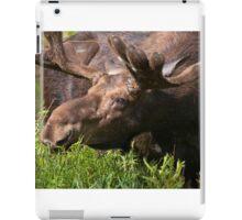 Bull Moose iPad Case/Skin