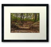 Stairs dug earth to climb to the forest Framed Print