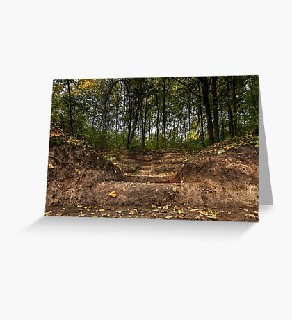Stairs  in forest Greeting Card