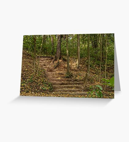 Stairs dug earth in autumn Greeting Card