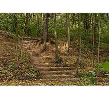 Stairs dug earth in autumn Photographic Print