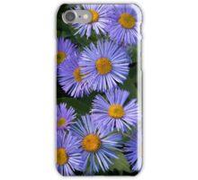Alpine Asters iPhone Case/Skin