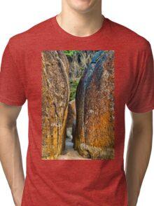Sunrise Rocks at Squeaky Beach Tri-blend T-Shirt