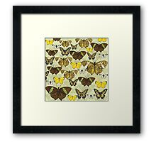Retro Vintage Butterflies Pattern Framed Print