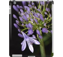 flower- agapanthus-blue-buds-one-flower iPad Case/Skin