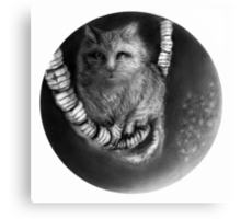 CIRCLE ART - CAT WALKS ON WIRE Canvas Print