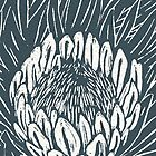 protea by Richard Morden