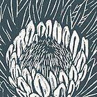 protea by Richard Morden