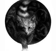 CIRCLE ART - CAT WALKS IN THE DARK by Lambkin Shepherd