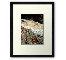 Livermore Leaves at High Water Framed Print