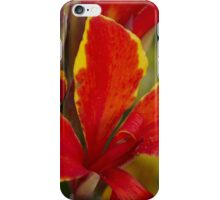 lily in spring iPhone Case/Skin