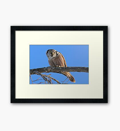 And he looked upon the land Framed Print