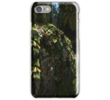 Foliage on a Wall iPhone Case/Skin