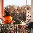 Sylvester and the Jack-o-Lantern by Nadya Johnson