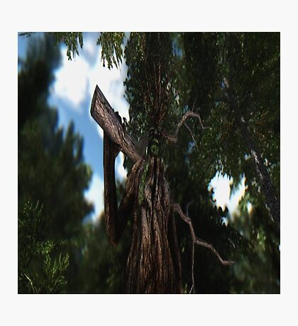 Groot's Big Brother Photographic Print