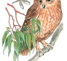 Boobook Owl & Dragonfly by heatherjoy