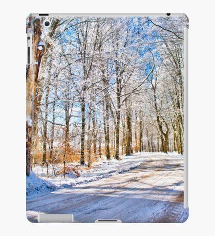 The kingdom of Winter iPad Case/Skin