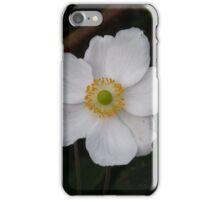 Anemone hupehensis var. japonica iPhone Case/Skin