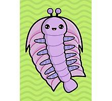 Kawaii Trilobite Photographic Print