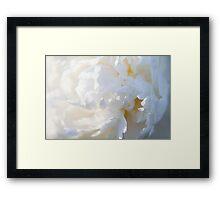 The Colour White - Peony Framed Print