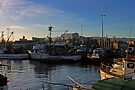 Wollongong Harbour At Dusk by Evita