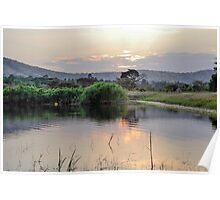 landscape african  lake Poster