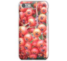 Cotoneaster 5 iPhone Case/Skin