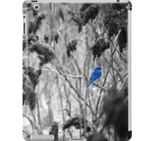 repose iPad Case/Skin