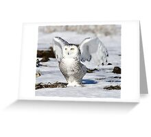 At the dawn I'm waking Greeting Card