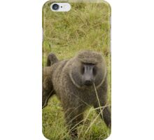 baboon in the african bush iPhone Case/Skin