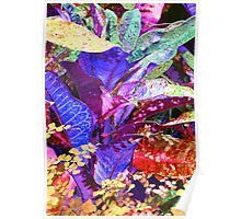 Fantasy Colored Leaf Abstract Poster
