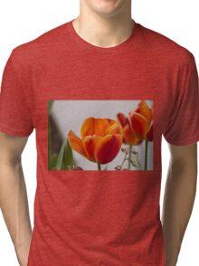 tulip in spring Tri-blend T-Shirt