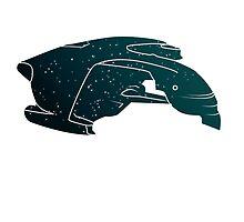 Star Trek Poster: Romulan Warbird by allenamin