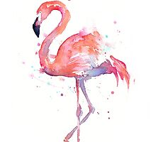 Flamingo Watercolor by OlechkaDesign