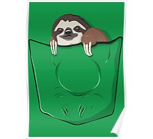 Sloth in a pocket Poster