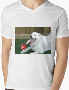 OH...LADYBUG ...THATS A COOL DRINK OF WATER...(CANINE-LADYBUG) - PICTURE & CARD & PILLOW -TOTE BAG Mens V-Neck T-Shirt
