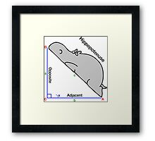 Math Humor Framed Print