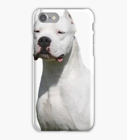 WHITE PIT BULL STUD iPhone Case/Skin