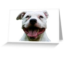 PLAYFUL PUPPY PIT BULL Greeting Card