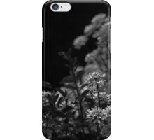 Edelweiss Flowers by Moonlight in Black and White iPhone Case/Skin