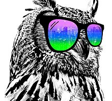 Cool Owl by clingcling
