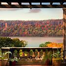 Wave Hill Pergola View by Jessica Jenney