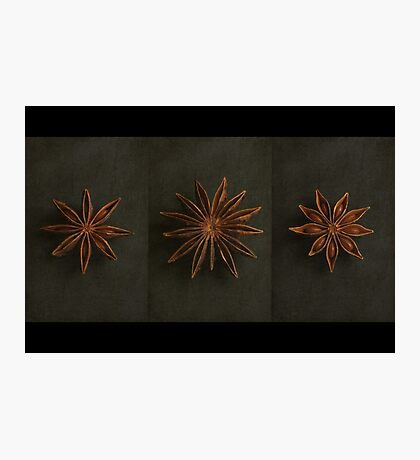 Star Anise Triptych Photographic Print