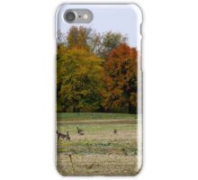 CANADA GEESE DON'T MIGRATE ANYMORE iPhone Case/Skin