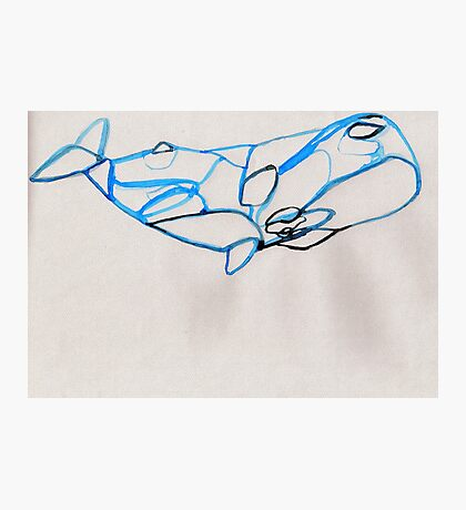 Construct-A-Whale Photographic Print