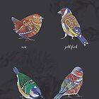 British Birds - Volume 2 by Jezhawk