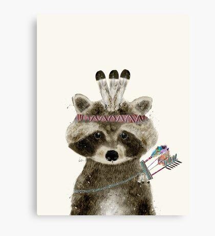 little raccoon brave Canvas Print