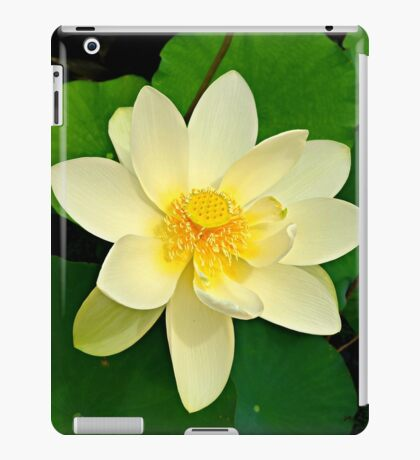 The Lotus Blossom iPad Case/Skin
