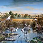 Paynes Prairie State Park- Day of The Sandhill Crane by Daniel Butler