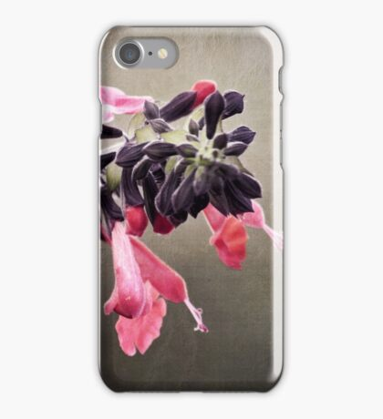 Spring Pink Blossoms iPhone Case/Skin